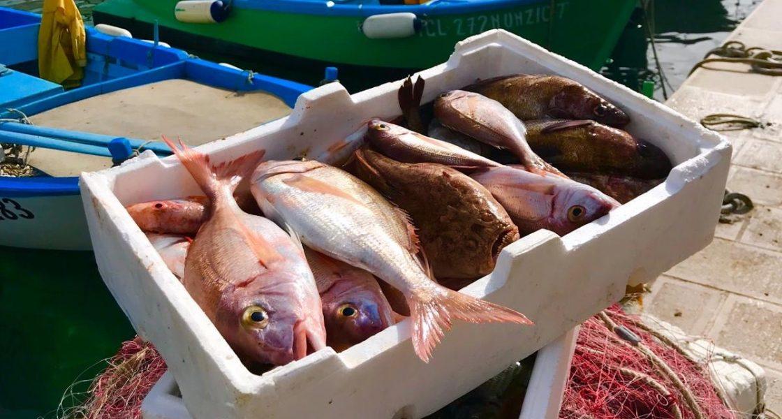 Castro - Pescato